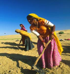 Crop Microinsurance India